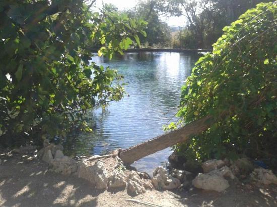 Venta El Frontil: Nacimiento de agua de El Frontil