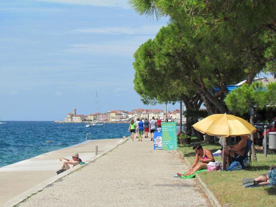 Waterfront En Route To Piran Bild Von Grand Hotel Bernardin