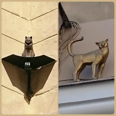 Кошки василисы и кота елисея