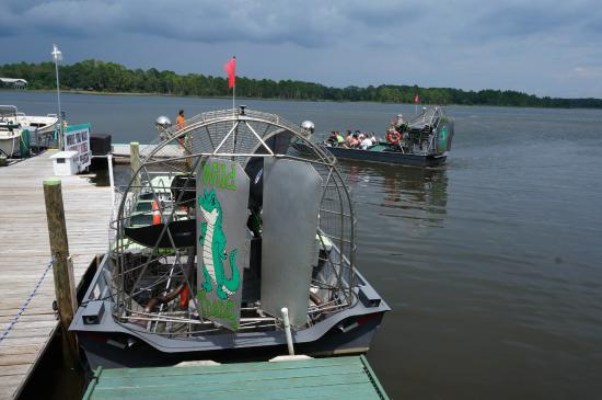 Picture Of Wild Thang Airboat Tours