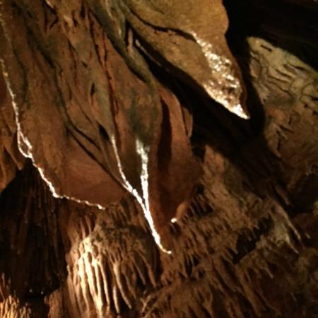 Bull Shoals Caverns: Bacon