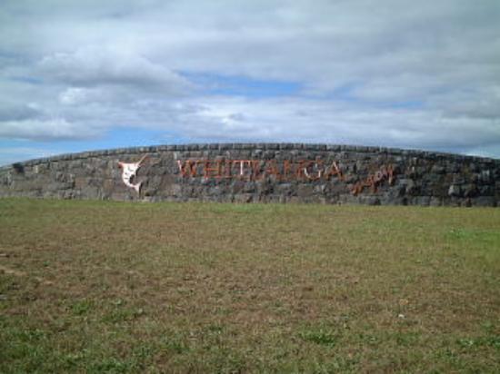 Whitianga i-SITE Visitor Information Centre: Whitianga