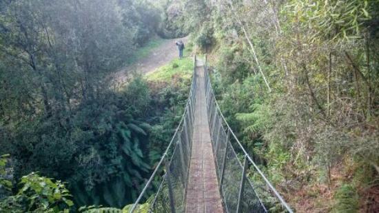 Waikanae, Nova Zelândia: sturdy suspension bridge
