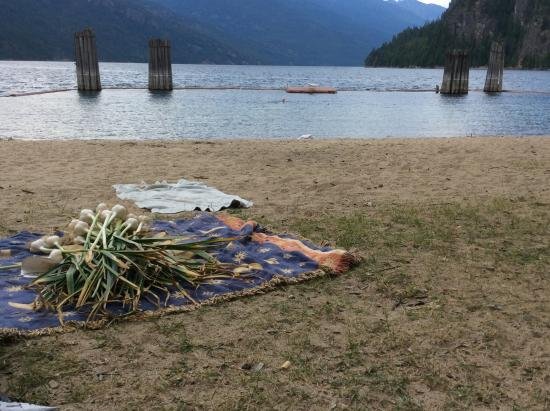 Slocan, Canada: The beach near the bed and breakfast