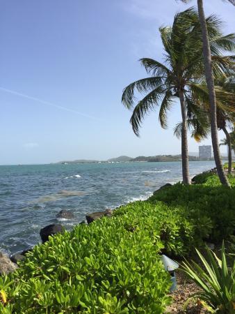Coqui Water Park: almost looks like Hawaii