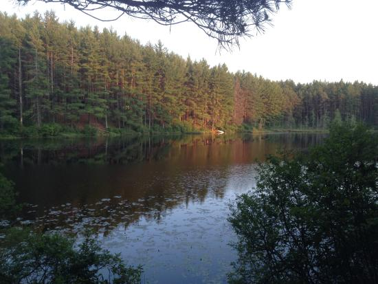 Pog Lake Campground: View from water next to campsite