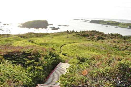 Cape Onion, Canada: Trails