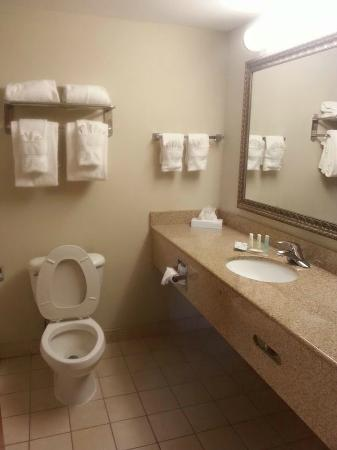 Comfort Suites: Didn't get the bathtub in the pic, but it was nice and clean. Smelled clean.