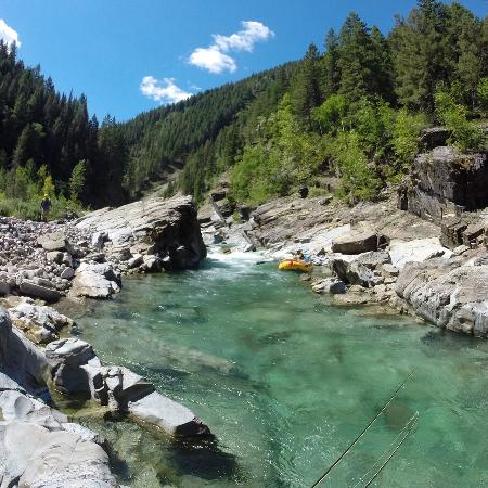 Great bear wilderness fly fishing trip picture of for Fly fishing glacier national park