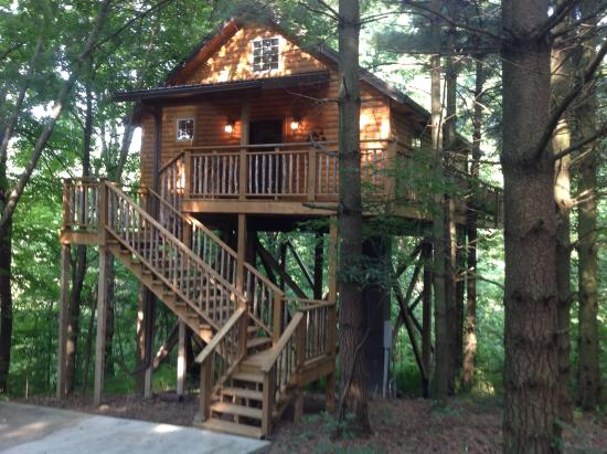 Coblentz Country Cabins: Wild Cherry Treehouse