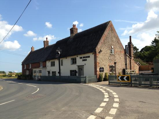 The Ingham Swan: From the road