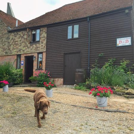 Hallwood Farm Oast B & B: The warmest welcome from Doug