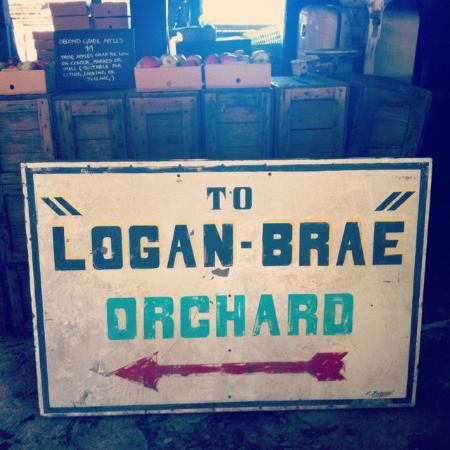 "Inside the paking shed - the ""old"" Logan Brae signage"