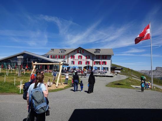 Berggasthaus Mannlichen : Large terrace & modern restaurant