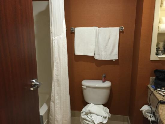 Holiday Inn Express & Suites Dayton-Centerville: Looking into bathroom - nice size