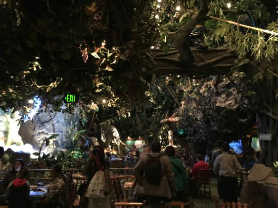 rainforest cafe picture of rainforest cafe san francisco rh tripadvisor com
