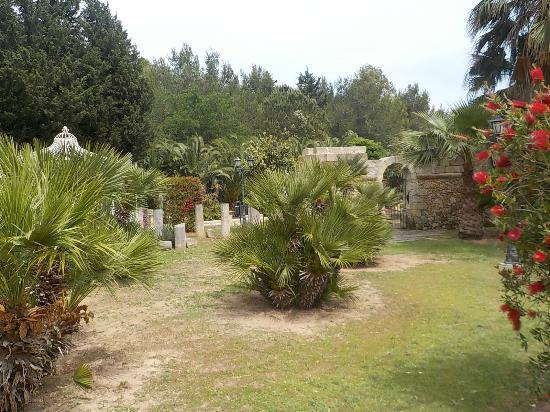 Elementi Decorativi Da Giardino : Il giardino con piante ornamentali ed elementi decorativi in