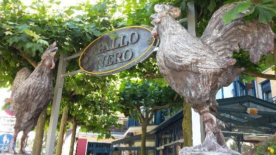 Gallo Nero Ristorante Pizzeria