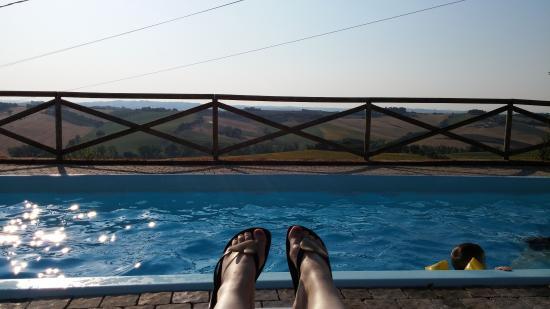 Polverigi, Италия: Lekker bij het zwembad