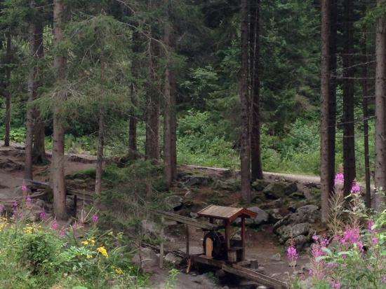 Waldcafe Stubobele: Stuböbele Waldcafe and Stuibenfalls waterfall