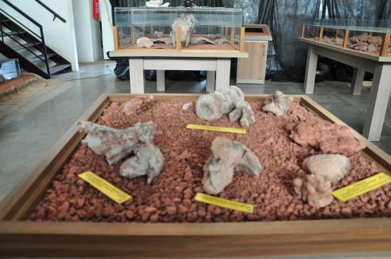 Candelaria: Uma pena a falta de espaço adequado - pela riqueza e importância dos achados arqueológicos na id
