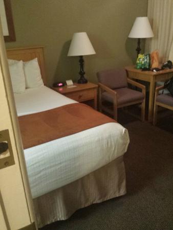 BEST WESTERN Pony Soldier Inn & Suites: Standard bedroom, clean and average