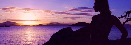 East Bedarra Island Retreat: View out of Lot 6