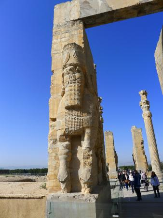 hi in persepolis Search the world's most comprehensive index of full-text books my library.