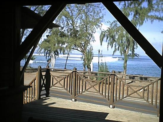 Dodo Spot Lodge