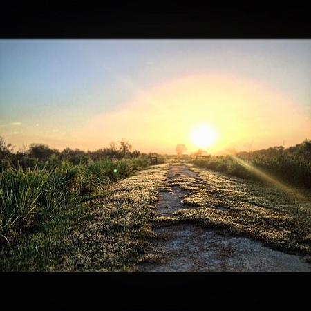 Leesburg, Floride : Emeralda Marsh Conservation Area