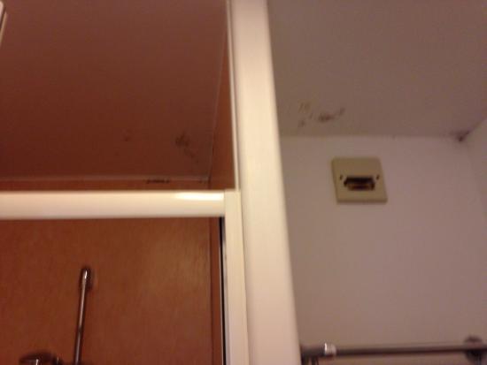 Hotel La Roche du Marais: Salle de bain inadmissible pour un deux étoiles. Refaire la chambre c'est bien même si il n'y a