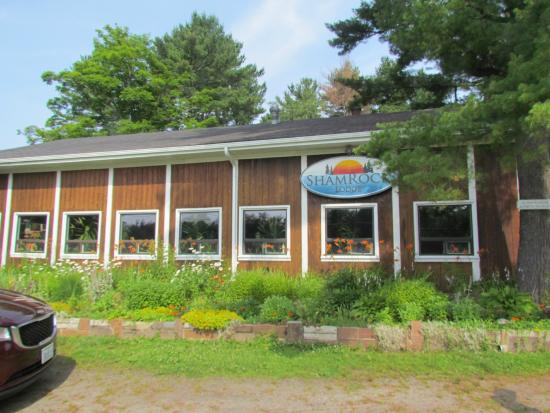 Port Carling, Canada : Welcome to Shamrock Lodge