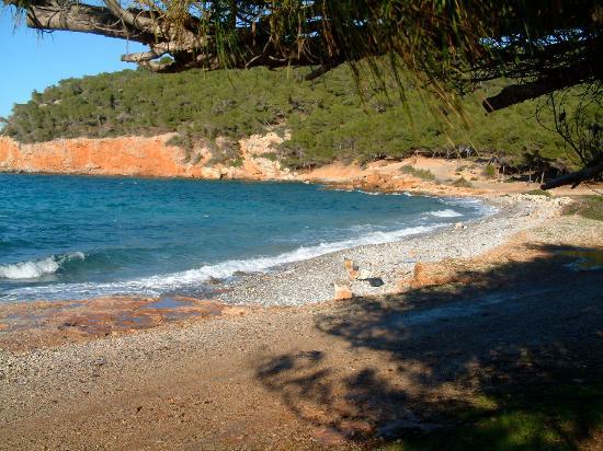 Hotel Milos: Beautiful beaches