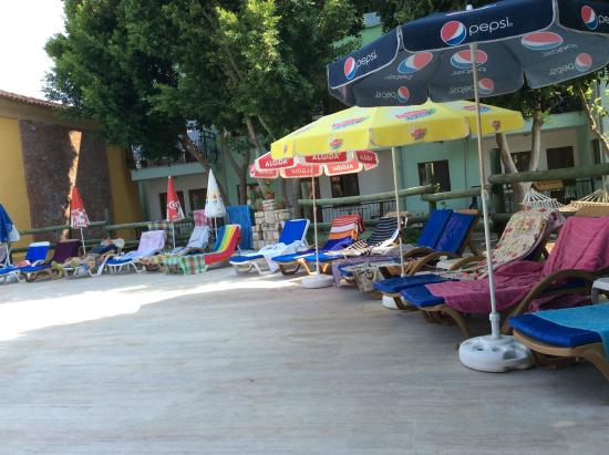 Sahin, Apartments : sunloungers all bagged by 10am