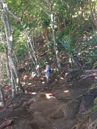 Pali Ke Kua Beach (Hideaway s Beach): Trail, section after the steep decline with steps