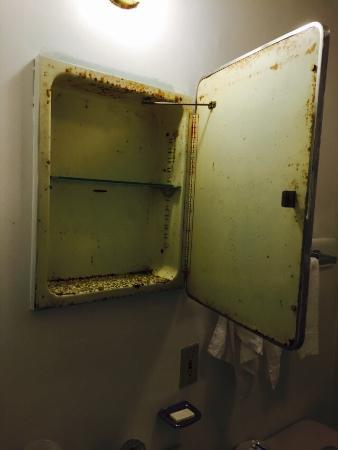 Carleton Circle Motel: Disgusting!!!