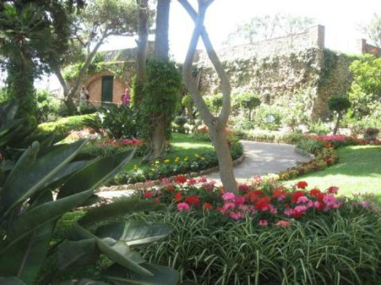 Hotel Canasta: The outside garden area was beautiful