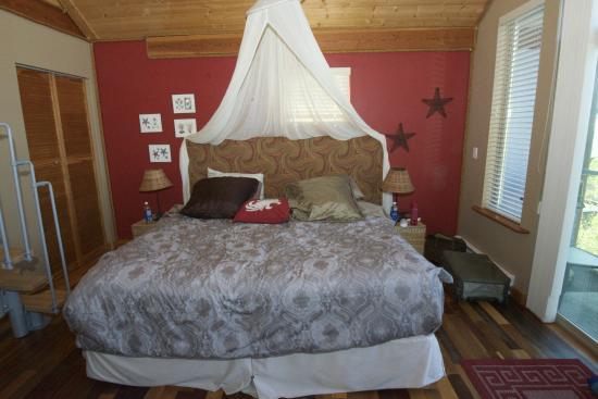 Starfish Studio Bed & Breakfast : Extremely comfortable bed