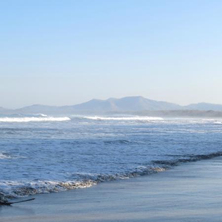 Playa Brasilito: Sand and waves