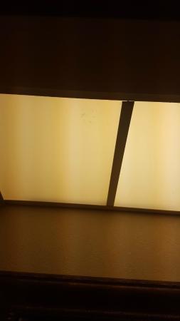 Comfort Inn & Suites : Dead bugs in light fixture