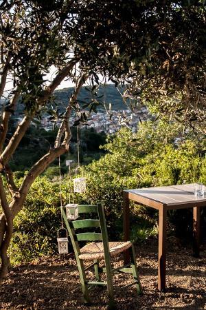 Eliathos Archanes Residence Houses: Favorite Spot