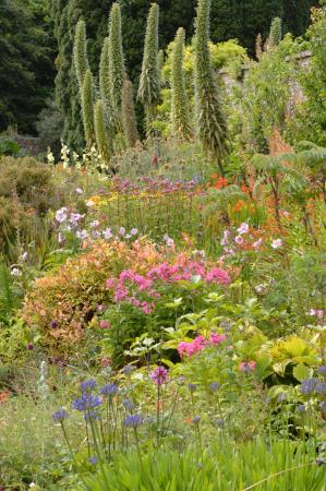Beaulieu House and Gardens : Herbaceous Border, August 2015