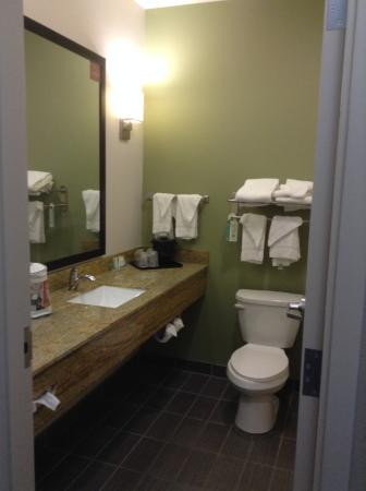 Sleep Inn & Suites: Nice large bathroom with walk in shower.