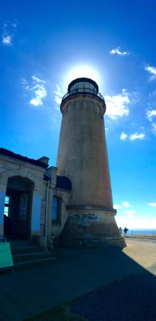 Ilwaco, WA: We took these down at the North Head Lighthouse, first time we have ever been to a lighthouse an