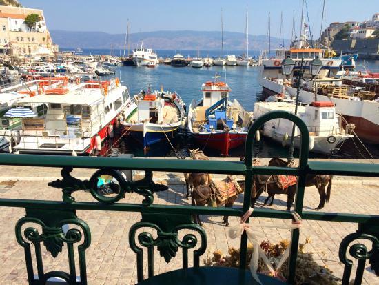 Hotel Sophia: View from shared balcony