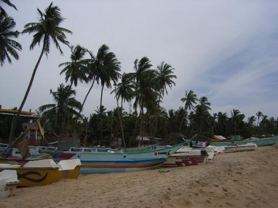 Ranga's Beach Hut