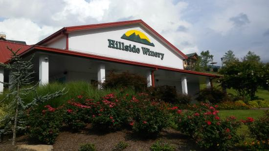 Hillside Winery: Wonderful Wine