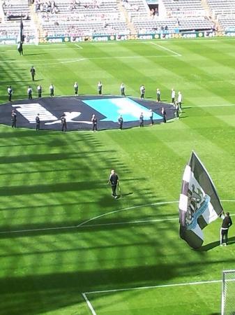 St James Park Pitch