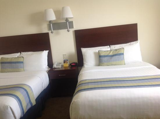 Hotel Aeropuerto Los Cabos: Room