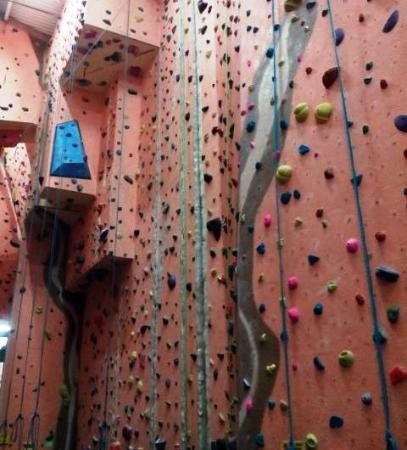 Earth Treks Climbing Center: One of the Harder Walls to Climb
